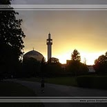 Regent\'s Park Mosque in London   England (sunset)